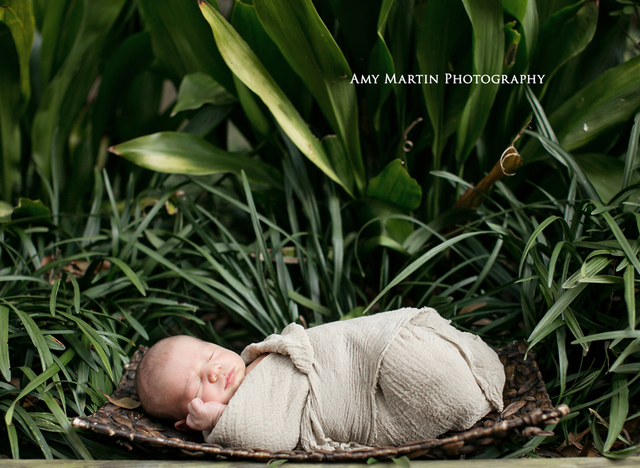 Newborn Photographer New Orleans Louisiana